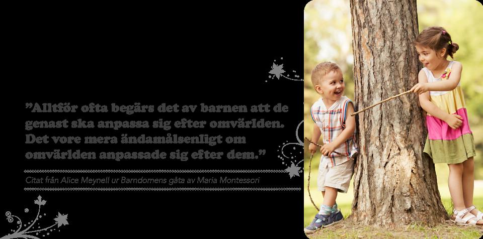 Hemsida_etta_bild_mos_140604_sv